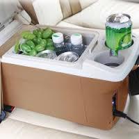 Car Refrigerator Market