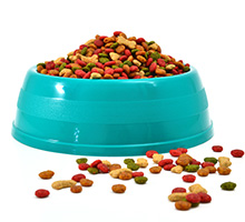 Grain Free Pet Food market