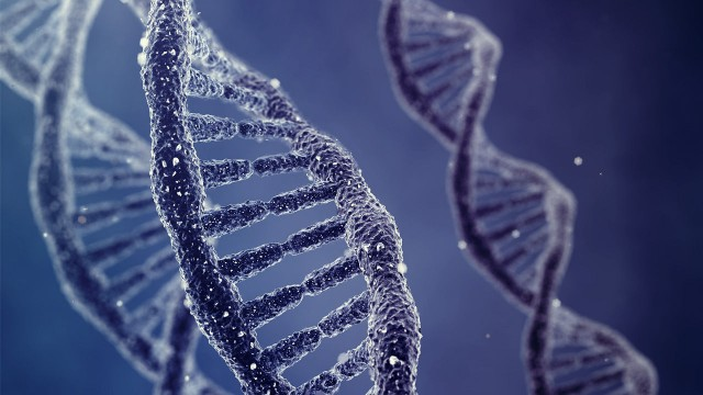 """""""Dark Matter"""" DNA Interpretation by Scientists with A New Tool"""