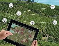 Agricultural Wireless Sensors Market