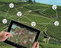 Agricultural Wireless Sensors Market