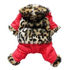 Global Animal Clothing Market