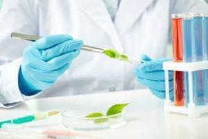 Bacteriocide market
