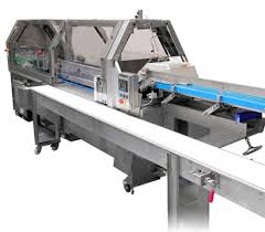 Global End Load Cartoners Market