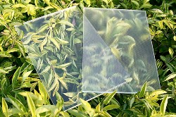 Ultra Clear Patterned Glass Market