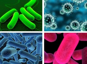 Antibacterial Coating Market