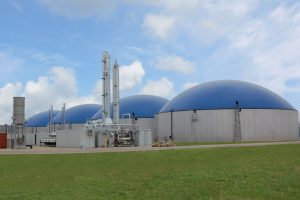 Biogas Power Market