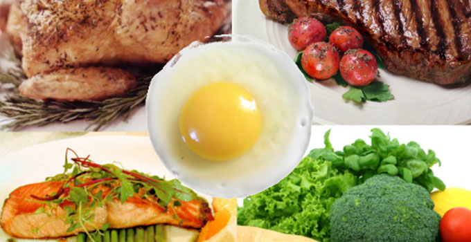 Feed Fats and Proteins Market