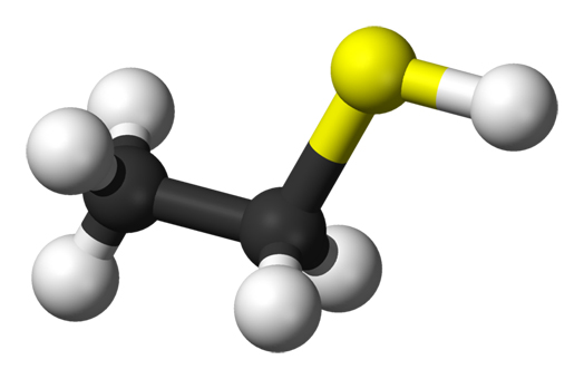 Methanethiol Market