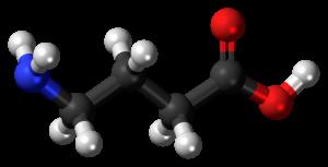 Aminobutyric Acid Market