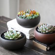 Ceramic Flower Pots and Planters Market