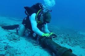 Undersea Light Cable Market