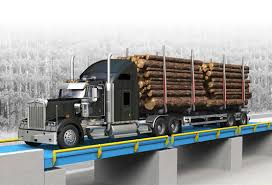Truck Scale Market
