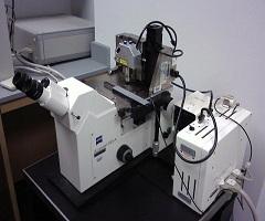 Atomic Force Microscope