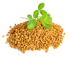 Fenugreek Market